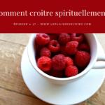 Épisode # 17: Comment croitre spirituellement?